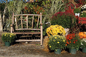 rustic bench at plant nursery